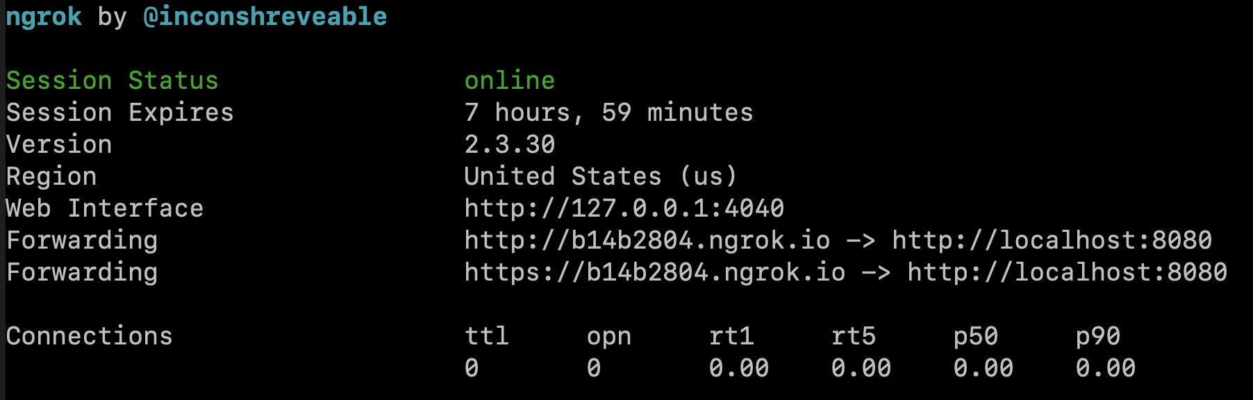 Ngrok started in terminal.